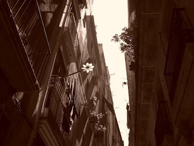 Bairro Gótico, Barcelona